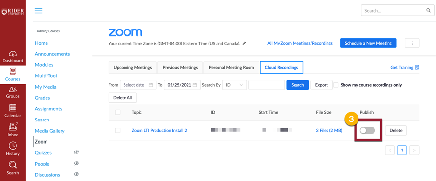 Look for the Publish Zoom toggle Button